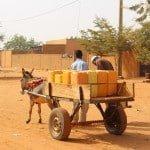 Transport eau bidon âne Niger